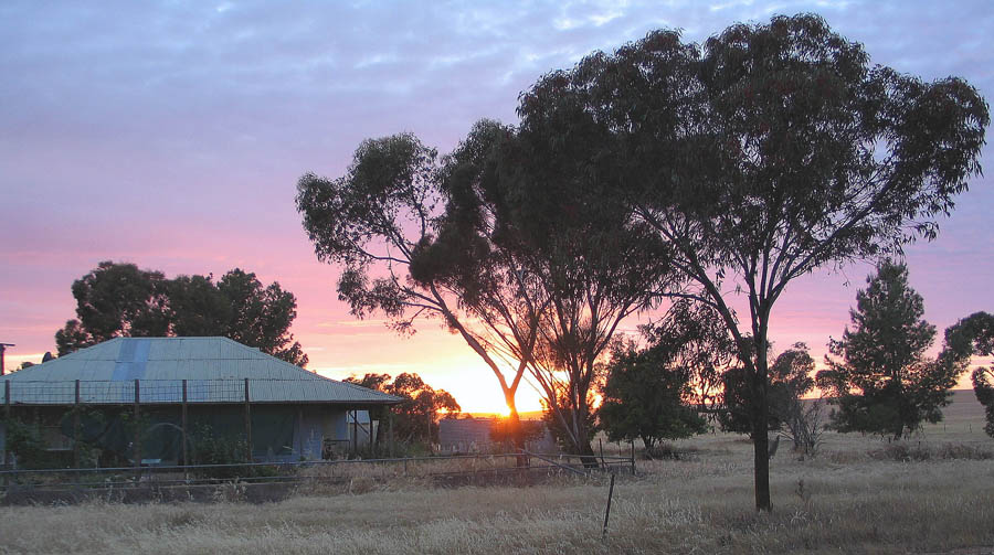 Name:  Homestead & sunrise on the Mallee.jpg