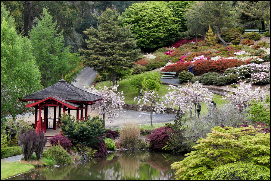 Click image for larger version  Name:Lake and garden .jpg Views:1 Size:357.3 KB ID:31275
