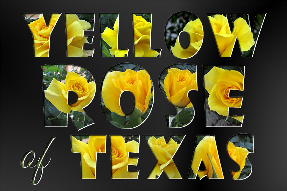Click image for larger version  Name:YROTexas.jpg Views:1 Size:196.6 KB ID:31292